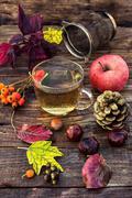 Autumn tea party - stock photo