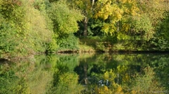 Pond in Autumn Stock Footage