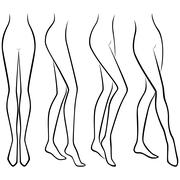 Set of lower parts of graceful female body - stock illustration