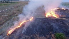 AERIAL VIEW. Dry Grass Of Field Burning In Steppe - stock footage