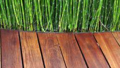 Wooden plank seat texture and green plant Stock Footage