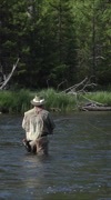Fly fishing recreation sport Yellowstone river vertical HD Stock Footage