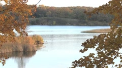 Jolly Ann Lake Autumn - stock footage