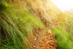Pathway landscape in mountains Stock Photos