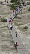 Mammoth Hot Springs tourists boardwalk from upper terrace vertical HD Stock Footage