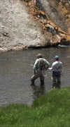 Stock Video Footage of Recreation sport fly fishing Firehole River Yellowstone vertical HD 041