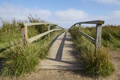 Amrum (Germany) - Wooden bridge in the landscape - stock photo
