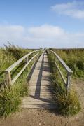 Amrum (Germany) - Wooden bridge in the landscape Stock Photos