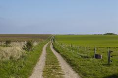Amrum (Germany) - Road way into landscape - stock photo