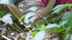 4K Happy little boy & girl playing in the woods & looking for insects - stock footage