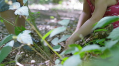 4K Happy little boy & girl playing in the woods & looking for insects Stock Footage