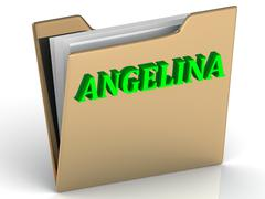ANGELINA- bright green letters on gold paperwork folder on a white background - stock illustration