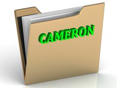 CAMERON- bright green letters on gold paperwork folder on a white background - stock illustration