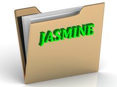 JASMINE- bright green letters on gold paperwork folder on a white background - stock illustration