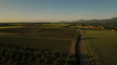 France Countryside Aerial low over Puimoisson area towards town Stock Footage