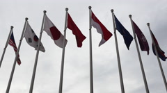 Multi National Flags Blow in the Wind Stock Footage