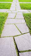 Random Stone pathway Stock Photos