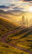 Curve road to mountain forest in fog at sunset Stock Photos