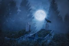 Crow sitting on a gravestone in moonlight Stock Photos