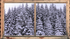 Heavy snow falling in wooded area seen through window Stock Footage