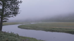 Cold foggy river eerie - stock footage