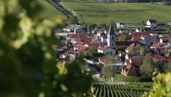 Champagne vineyards in France Stock Footage