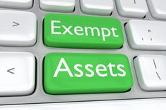 Exempt Assets concept Stock Illustration