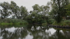 Vegetation and landscape along the Havel River Stock Footage
