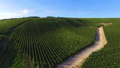 France, Champagne vineyards Stock Footage