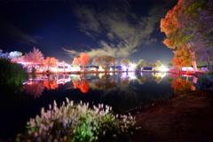 6K Astro Time Lapse of Stars over Joshua Tree Music Festival Venue Stock Footage