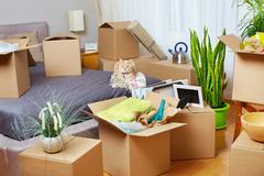 Moving boxes in new house. Stock Photos