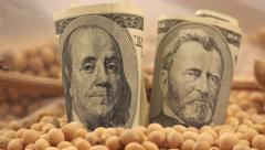 Making profit from soybeans harvest in USA Stock Footage