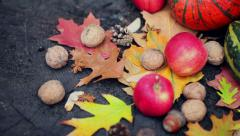 Autumn composition on an old dry tree stump in the forest Stock Footage