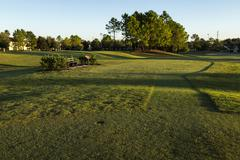 Golf course sunrise and landscaped grass.  Orlando, Florida - stock photo