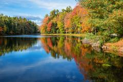Reflections in pond on sunny autumn day - stock photo
