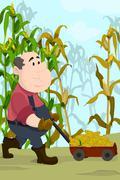 Farmer harvesting corns Stock Illustration
