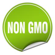 non gmo round green sticker isolated on white - stock illustration