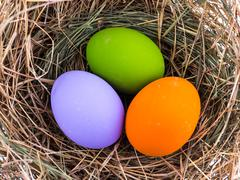 Stock Photo of color eggs