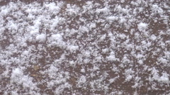 View of autumn sudden snow close-up. Snow storm Stock Footage