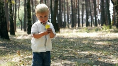 Caucasian kid child baby boy in romantic sunny forest. Childhood Memories Stock Footage