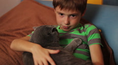 Boy stroking and caressing a large gray cat British breed Stock Footage
