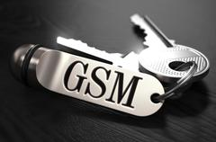 GSM Concept. Keys with Keyring - stock illustration