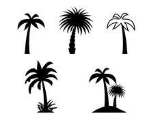 Silhouette of Palm Trees. Vector Illustration - stock illustration