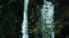 National Park Plitvicka jezera. Stock Footage