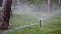 Watering of lawns in park by means of water sprays - stock footage