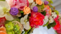 2015 08 08 13 flowers Stock Footage