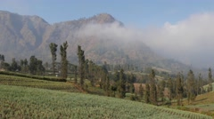 TIMELAPSE Clouds over Cemoro Lawang at Bromo,Cemoro Lawang,Java,Indonesia Stock Footage