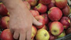 Putting Apples In A Crate - stock footage