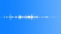 Leaf Cruch Delicate - sound effect