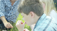 4K Happy family eating freshly picked summer fruit in the countryside - stock footage